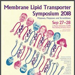 Lipid membrane poster / 細胞膜ポスター