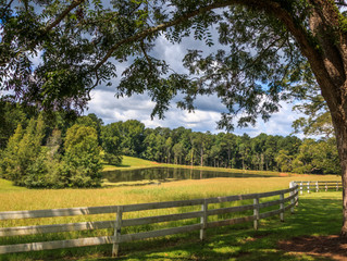 You Can Still Purchase Recreational Land For A Fair Price