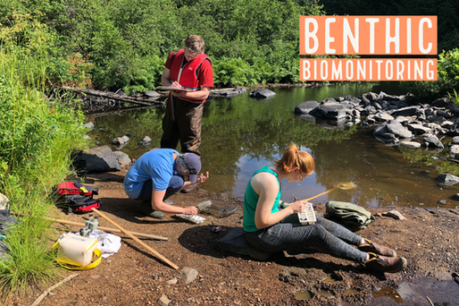 Benthic Biomonitoring