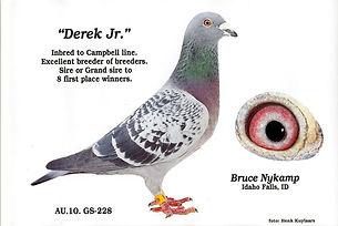 Derek Jr. B13.jpg
