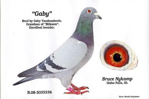 Gaby B10.jpg