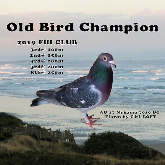 Old Bird Champion 7019.JPG