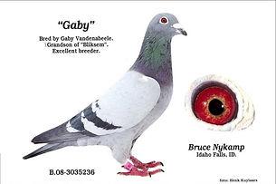 Gaby (2)_edited.jpg