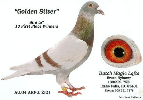 Golden Silver B6.jpg
