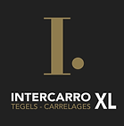 Intercarro-Xl-logo.png