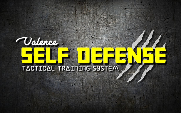 valence self defense tactical training system drome cours féminine agression karaté commando penchak silat krav maga kali jeet kune do mma combat boxe ggkma formation pro team bulding CE entreprise séminaire julien gartner