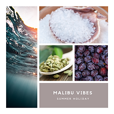 Malibu vibes .png