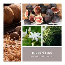 Hidden Figs.png