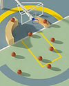 Basketballs composition