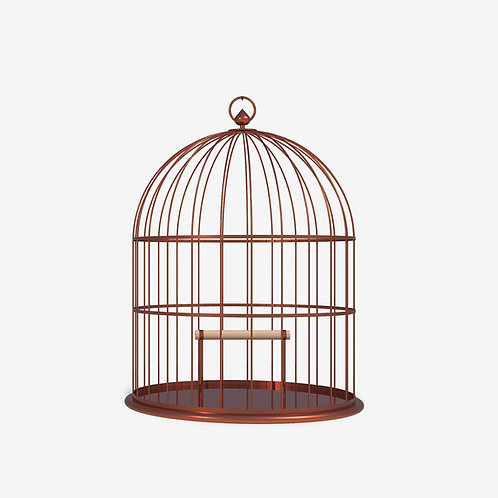 Finches cage