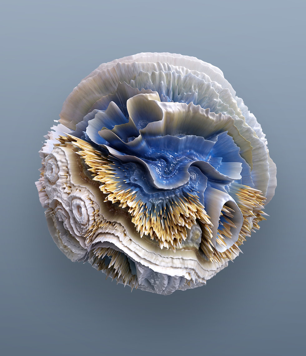 3d render of corals