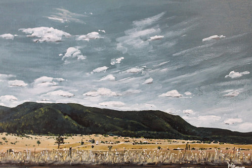 Inverell Roadside - Limited Edition Print