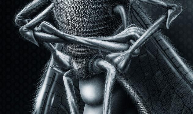 Casper mosquito repellent (5).jpg