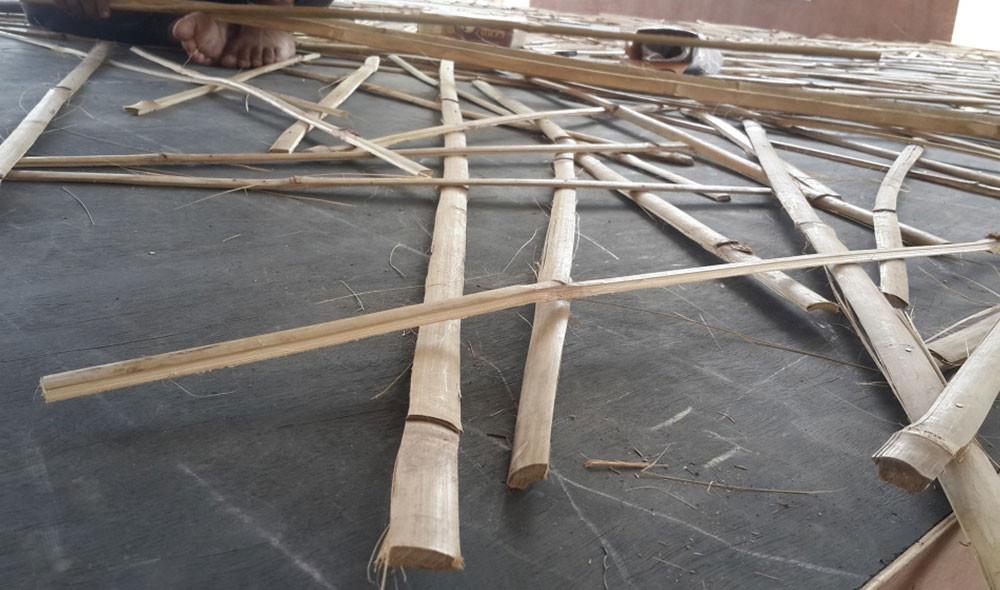 bamboo portrait (3).jpg