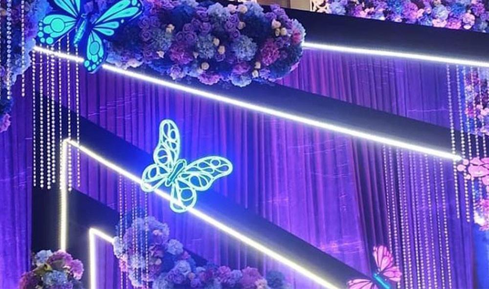 Kinetic butterflies (4).jpg