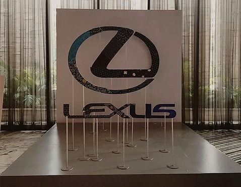 Lexus anamorphic art (1).jpg