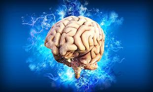 brain-4314636_1920.jpg