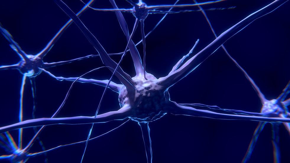 nerve-cell-2213009_1920-2.jpg