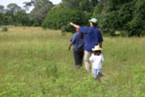 Family Tour | Pantanal Trackers