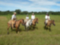 Horseback Riding in Family | Pantanal Trackers Tours