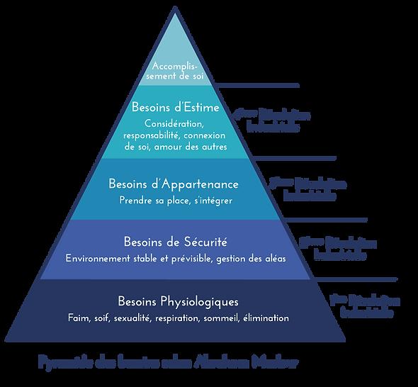 Pyramide_des_besoins_selon_Abraham_Maslo