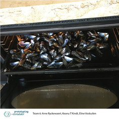 On this picture you can see mussel shells in an oven. We bake the mussel shells to make them more brittle, this not only makes them easier to shred but also allows us to grind the shells to a finer powder. This first batch was baked at 180°C for 30min.     #Musselshells #Oven #Wash #Bake