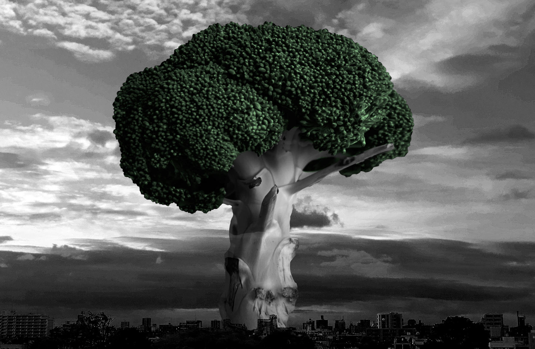 Broccoli's dream