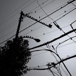 electro line