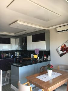 ceiling radiator.jpg