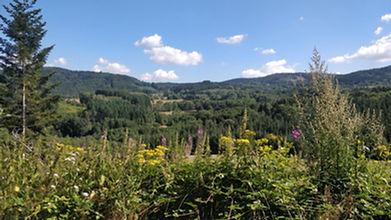 uitzicht campingenwildebloemen3.jpg