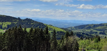 uitzicht camping 2021 .jpg