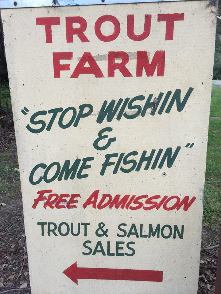 Trout & Salmon Farm Harrietville