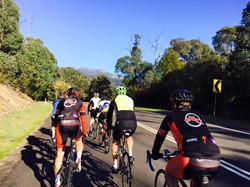 Spring Cycling.jpg