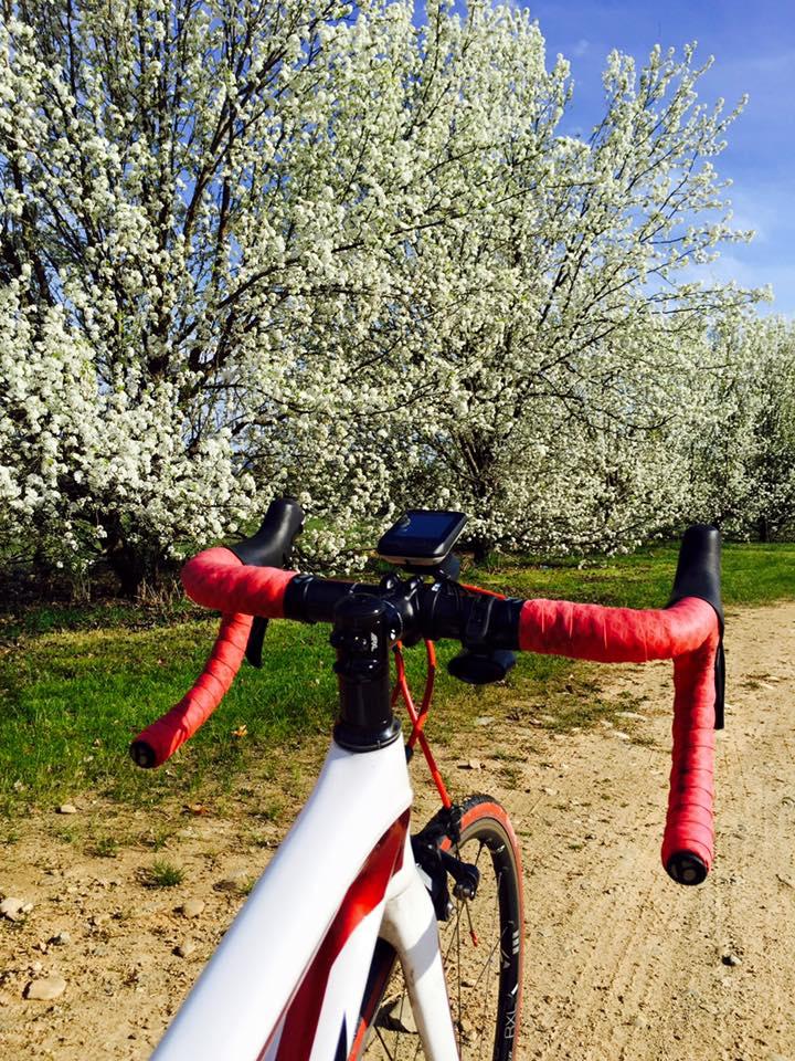 Spring Bike Riding.jpg