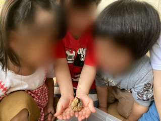 カブトムシの幼虫の寄付