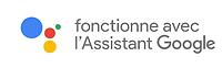Assistant Google logo.png