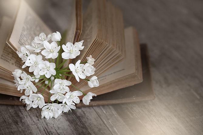 book-1356337_960_720.jpg