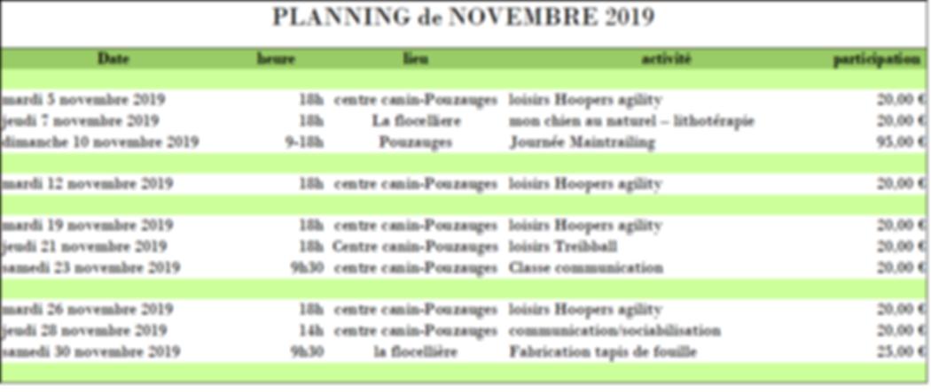 planning novembre.png