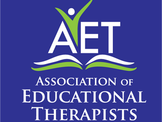 What Is Educational Therapy?