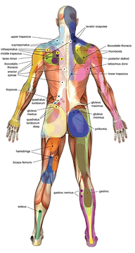Trigger Point therapy Greece NY