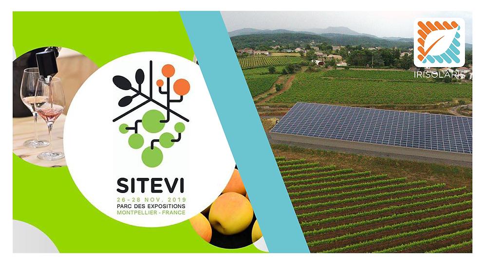 bâtiment photovoltaïque dans champ de vignes
