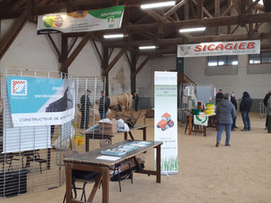 VENTE REPRODUCTEURS CHAROLAIS POUR IRISOLARIS / PARTICIPATION IN THE CHAROLAIS BREEDING SALE FOR IRI
