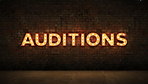 Auditions Brick Wall.png
