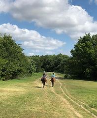 Benbrook Stables Riding Academy