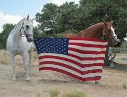 Celebrate Independence Day the Right Way with Benbrook Stables