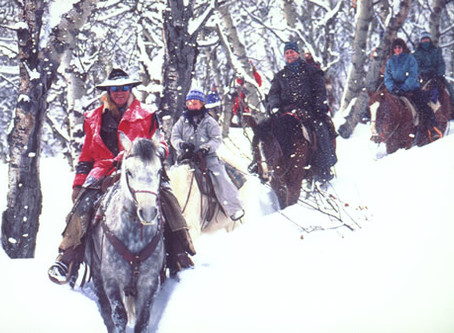 Winter Family Fun: One Free Trail Ride When You Book Five or More Riders