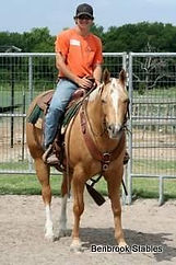 Horseback Riding Lessons - Benbrook Stables