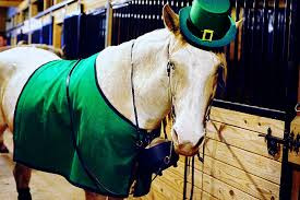 St. Patty's Day at Benbrook Stables