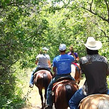 Benbrook Stables Trail Riding Fort Worth Texas Horses