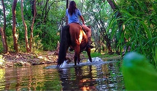 Benbrook Stables Trail Riding Fort Worth Tx.